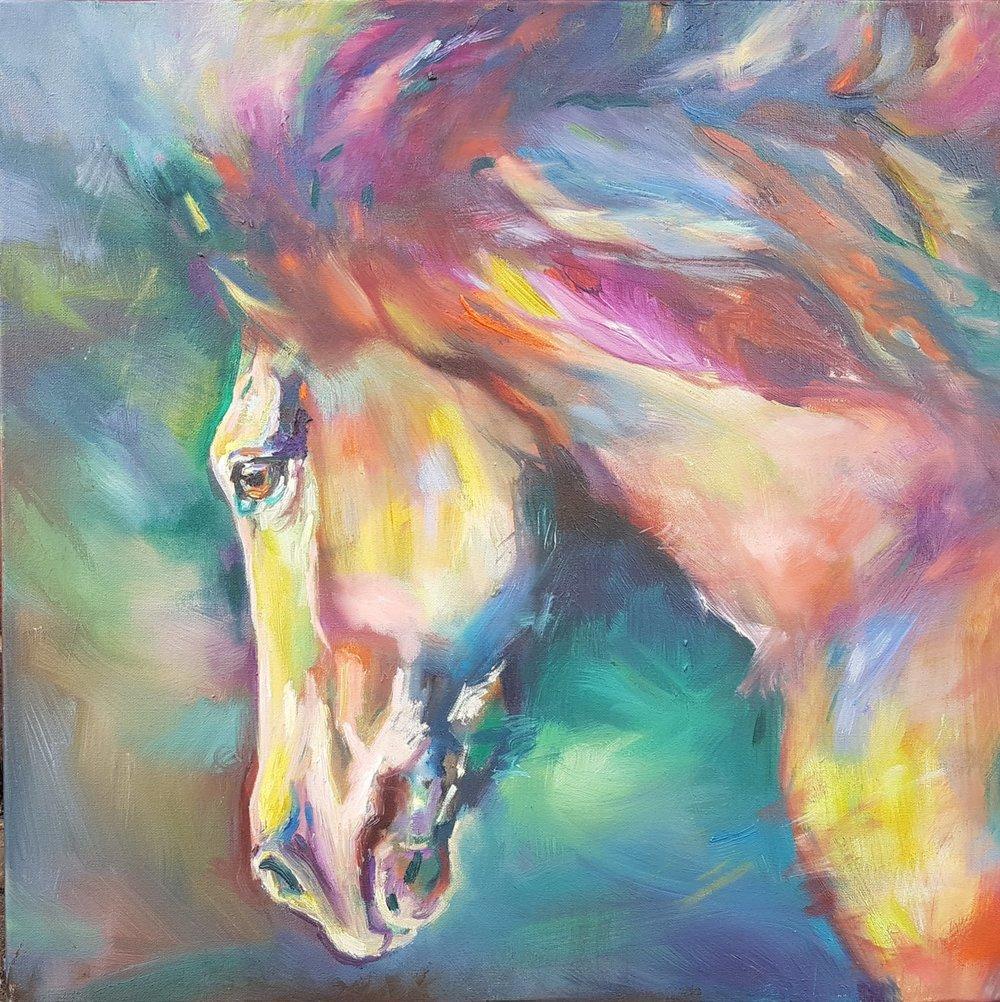 horse sue gardner.jpg