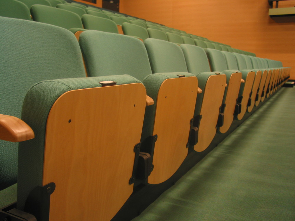 Retractable_Seats_show_wood_panels.JPG