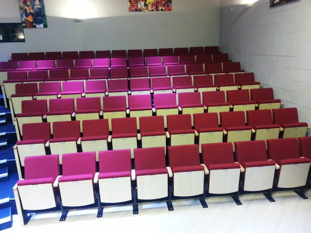 Vine_Hall_School_custom_performing_arts_seating_fixed_chairs.jpg