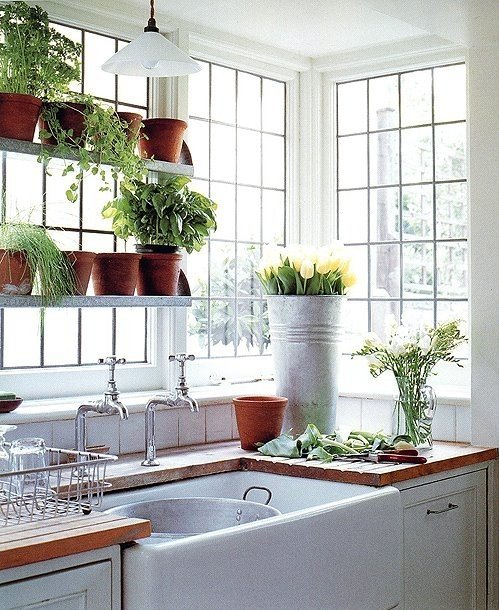 http://www.apartmenttherapy.com/the-urban-gardener-window-gardens-169932