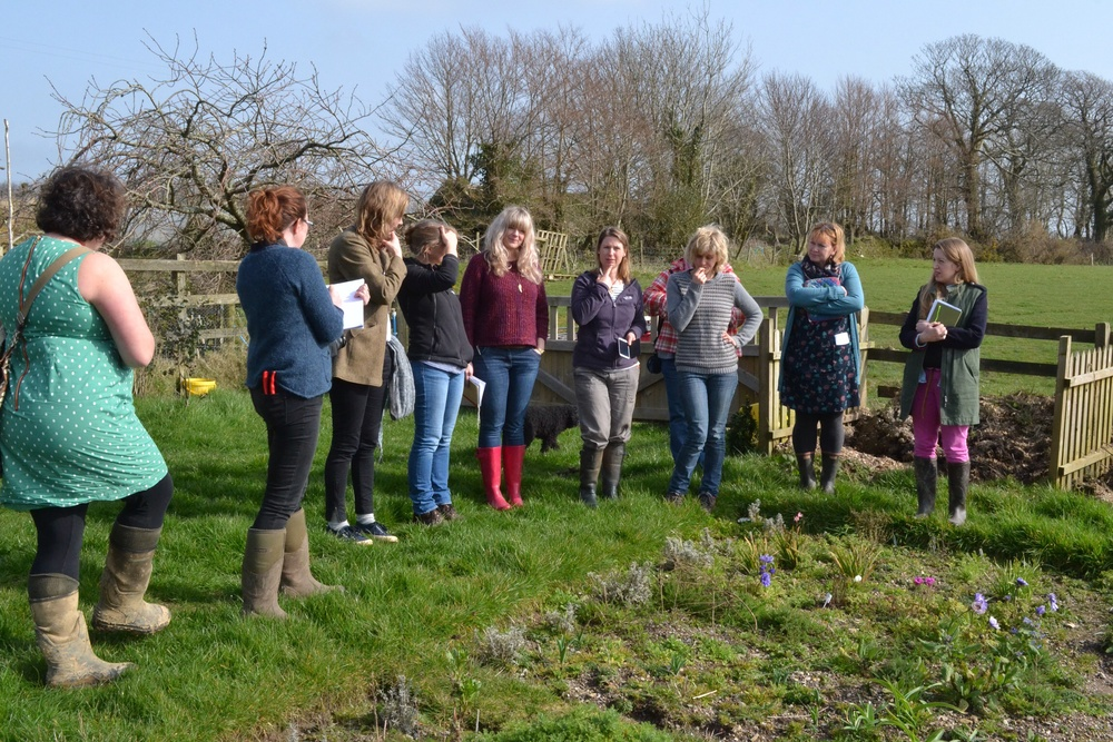 A garden tour sharing planting plans, hopes and dreams....we all want the perfect growing conditions!!
