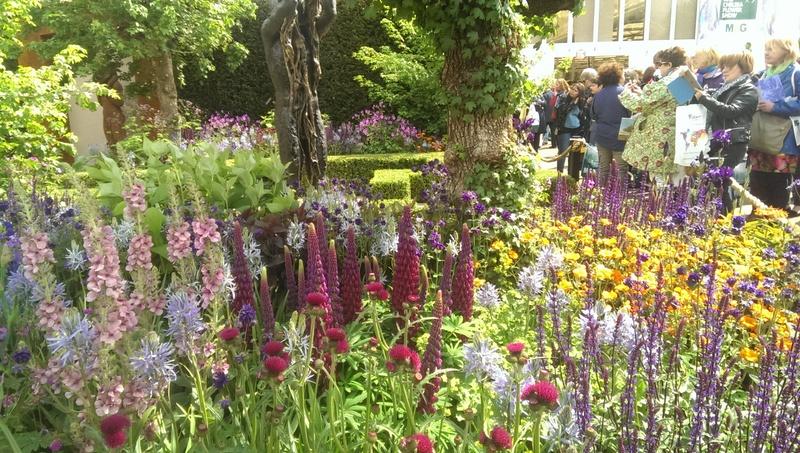 chris beardshaw's garden for morgan stanley gold chelsea 2015