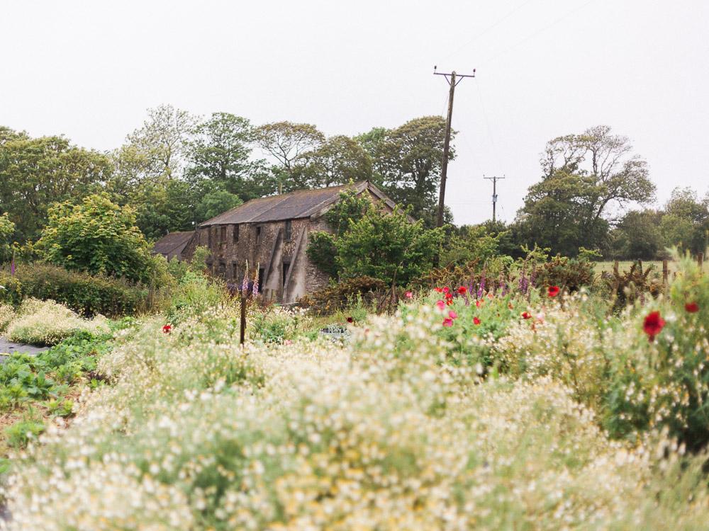 imogen xiana garden gate flower company-9.jpg