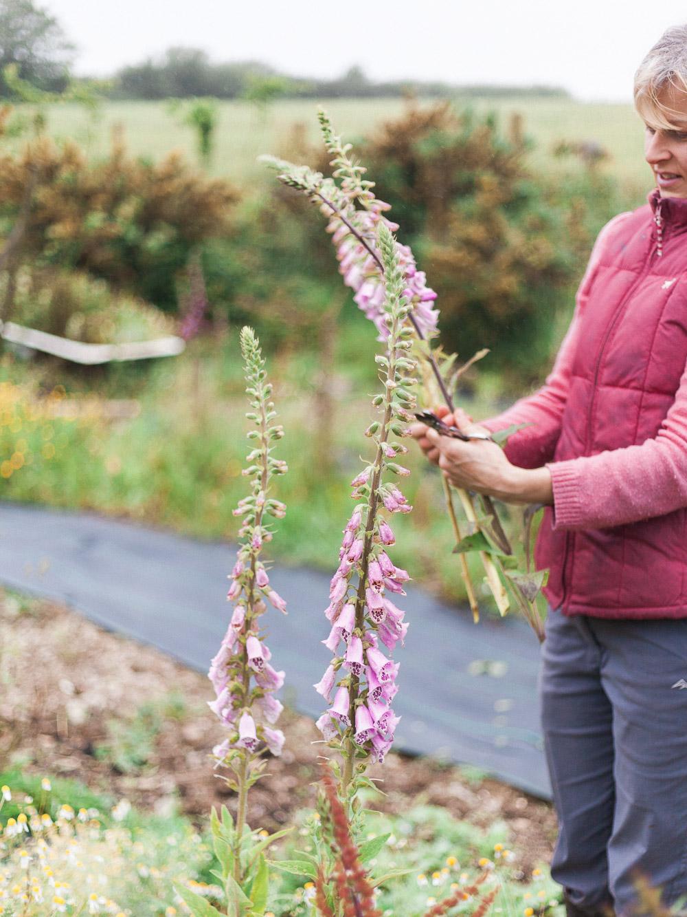 imogen xiana garden gate flower company-14.jpg