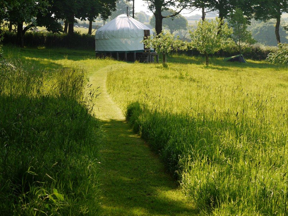 Lower Yurt.jpg