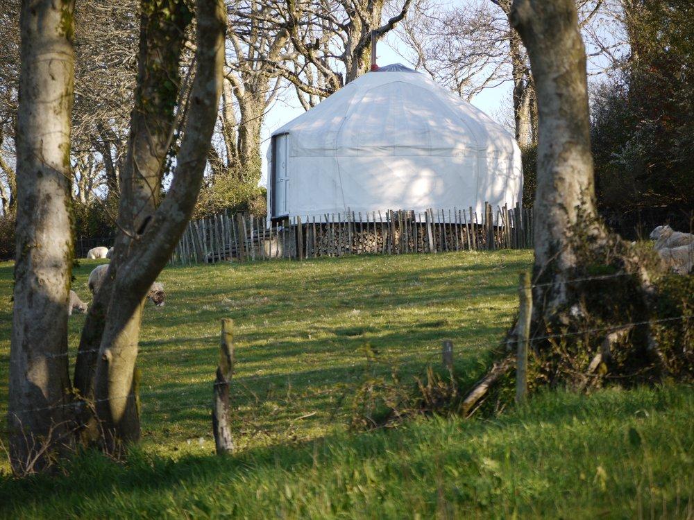 Higher Yurt 1.jpg