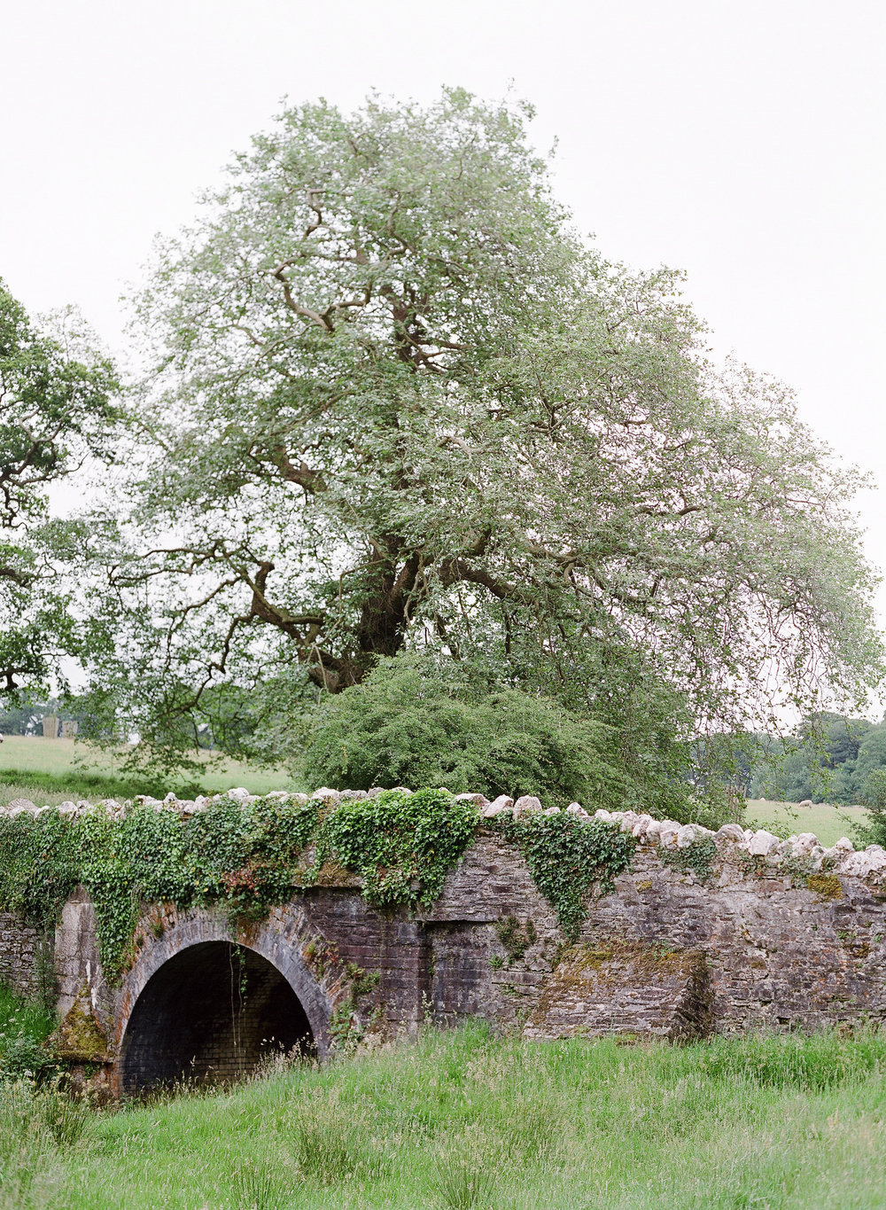 Boconnoc Bridge