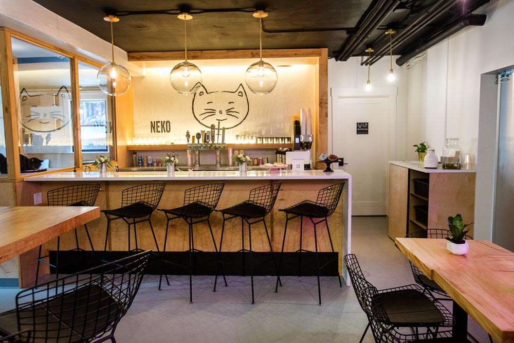 Pratt_Neko Cat Cafe_025.jpg