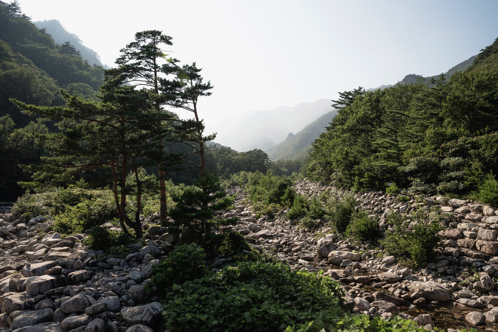 Hiking trail in Seoraksan National Park.
