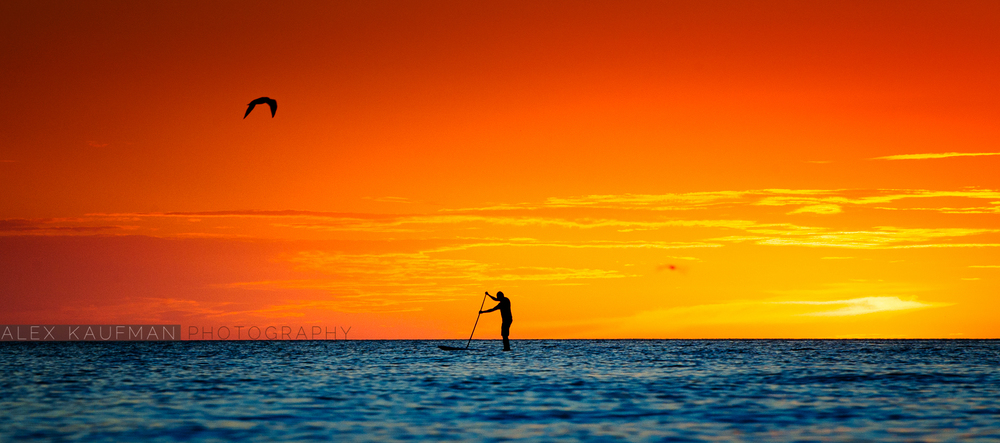 Paddleboarder at Sunset