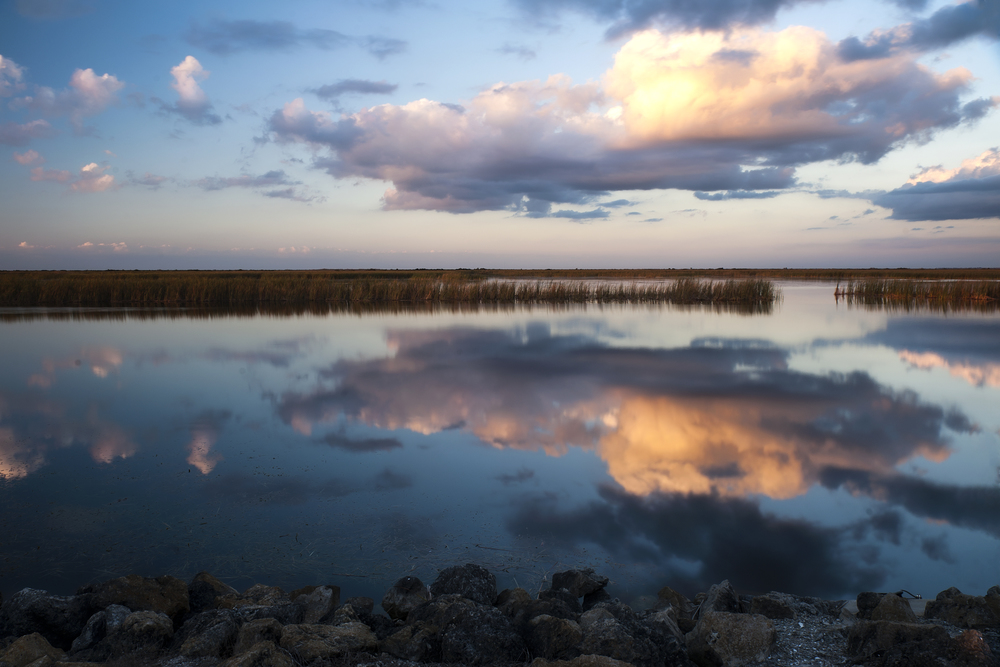 Everglades Twilight