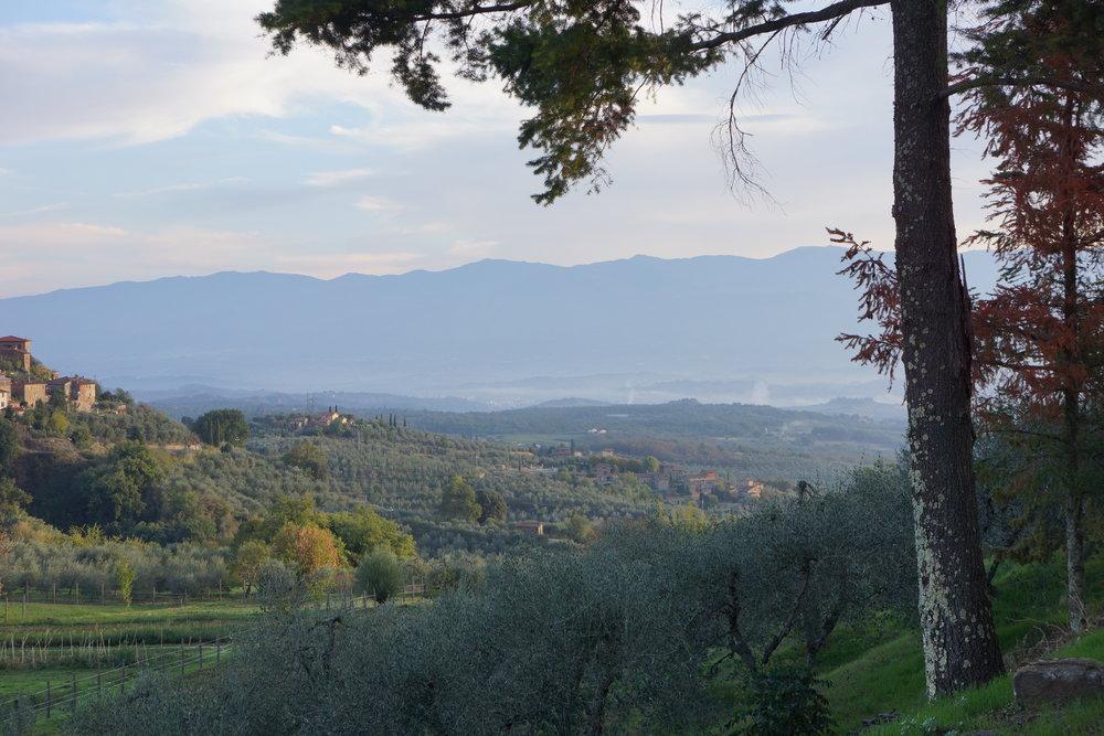 landscape l'eroica