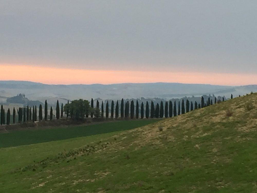 beautiful landscape chianti.JPG