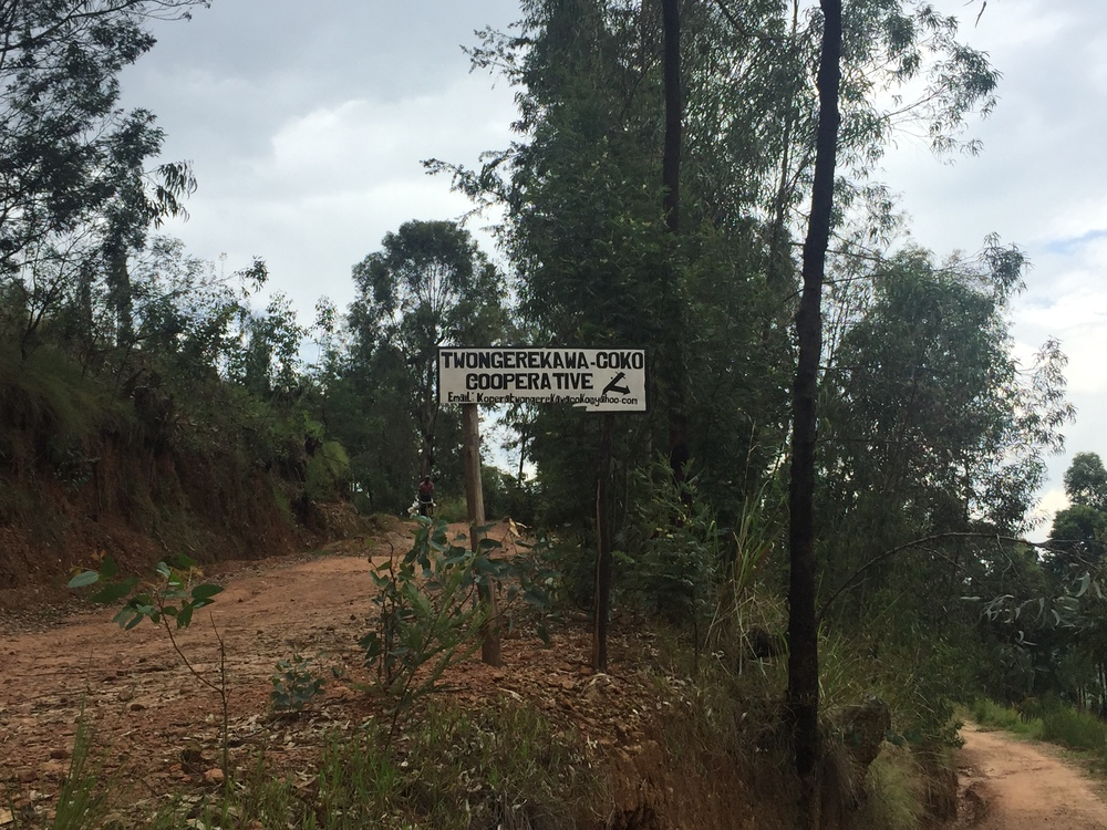 Entrance to the Twongerekawa Coko cooperative area.