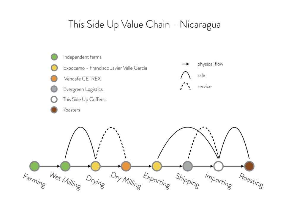 Our Nicaraguan chain looks slightly different because the drying of the coffee is done centrally. Expocamo picks up the wet parchment from the farms and takes utmost care to attain uniform and shaded drying. This ensures a much longer shelf life and in the long run, better prices to the farmers.