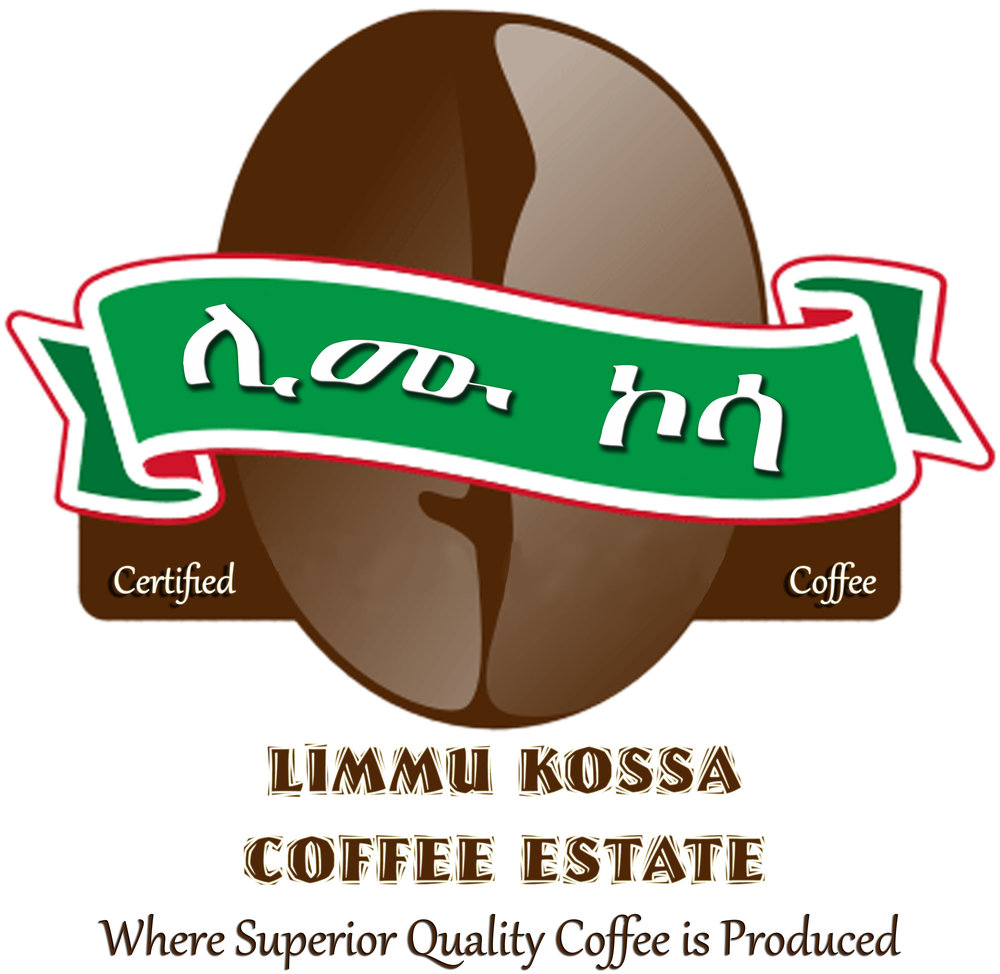 Limmu Kossa is an independently exporting coffee estate, privately owned and social in nature.