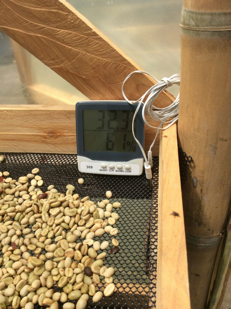 Moisture meter used primarily to test differences in patio and raised bed drying.