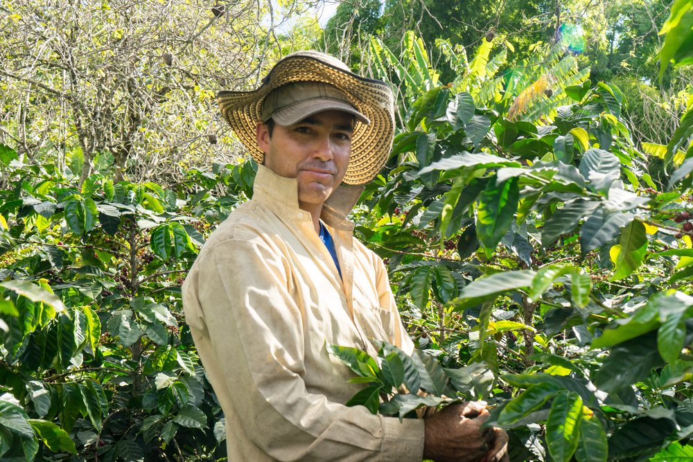 Second son of Alfredo. Like Ibeth, he also helps in the picking, hulling and packing of all Argote Specialty coffee for export. Owns 1 hectare of coffee fields.