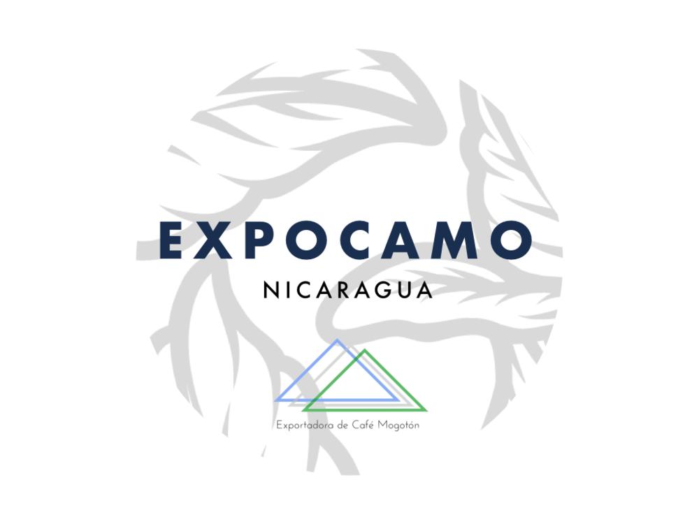 Exocamo preview
