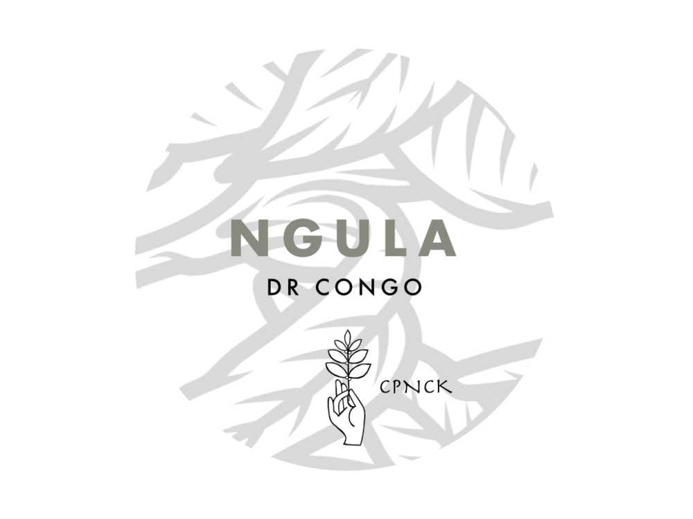 Ngula Micromill Fully Washed - notes of cherries, grape and butterscotch. Fully washed lot from one of CPNCK's six micromills on Idjwi island.