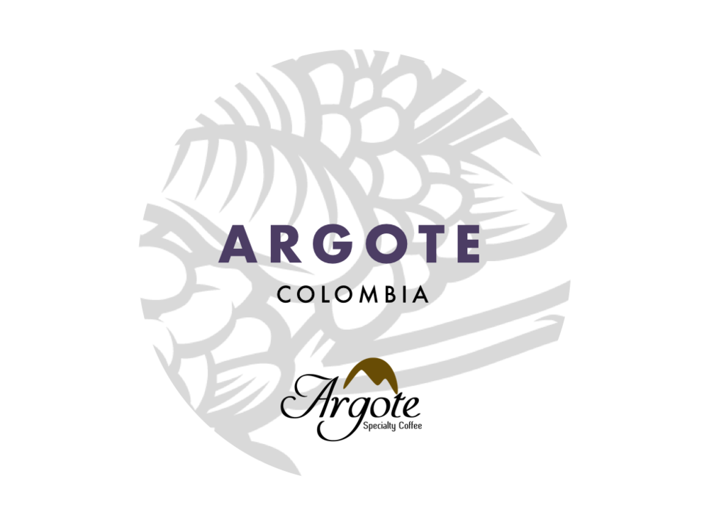 Maria Argote Single Farmer lot - notes of milk chocolate, nougat, plum. fully washed. aunt of the Argote family.