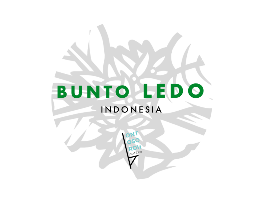 Bunto Ledo Honey Washed (first import) - notes of passion fruit, custard cream, florals. semi-dry or honey washed, exceptionally clean for a coffee from Toraja.