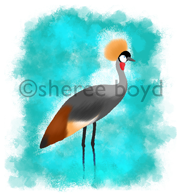 Grey Crowned Crane - Endangered