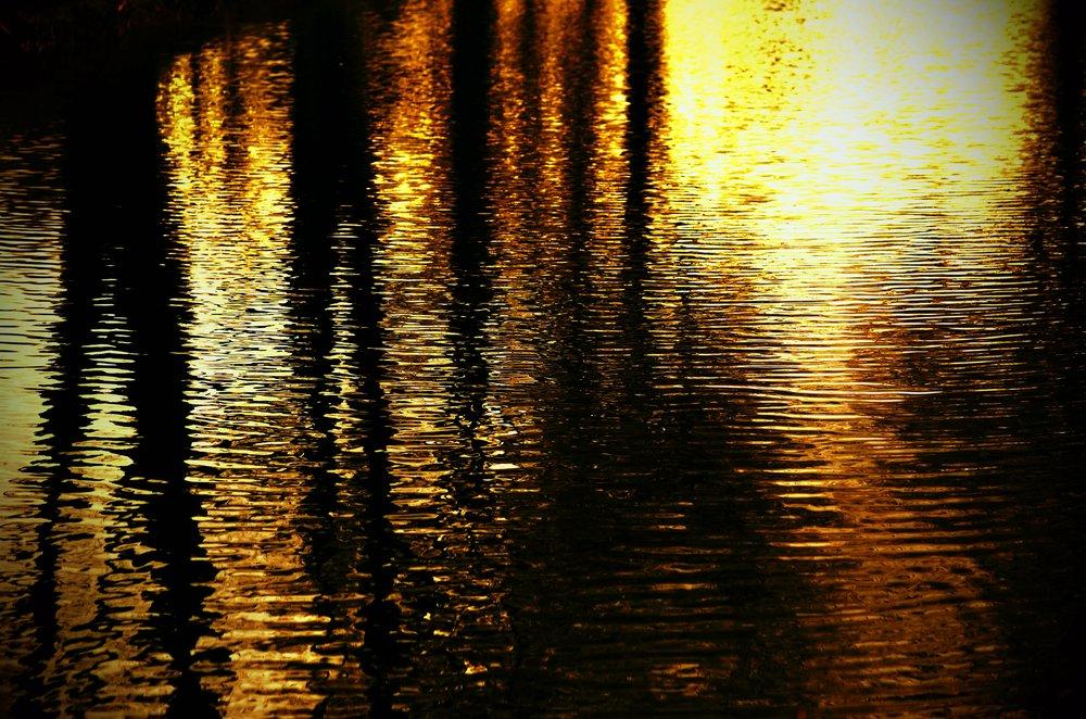 gold canal.JPG
