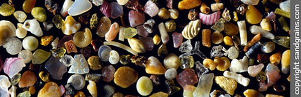 microscopic grains of sand from Maui