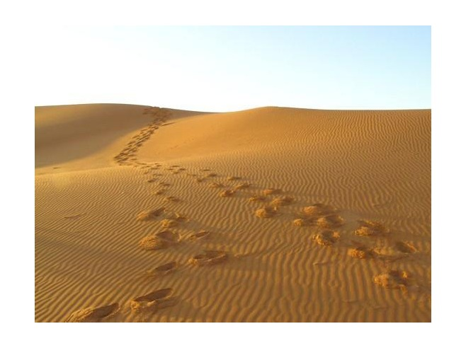 footprints_in_the_sand_Erfoud.jpg