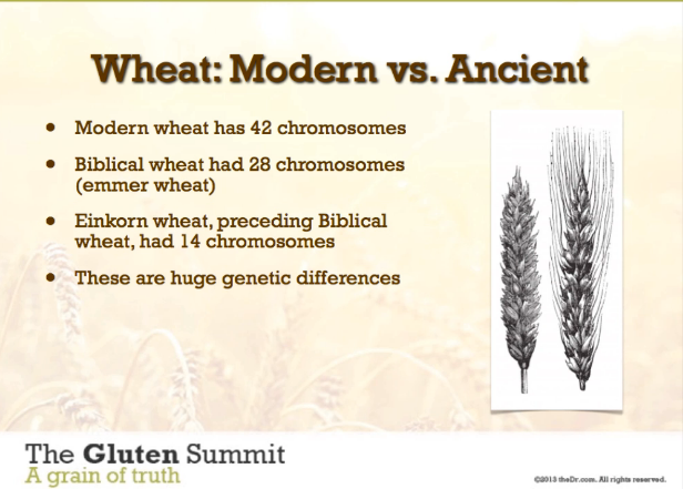 Wheat mod vs ancient.png