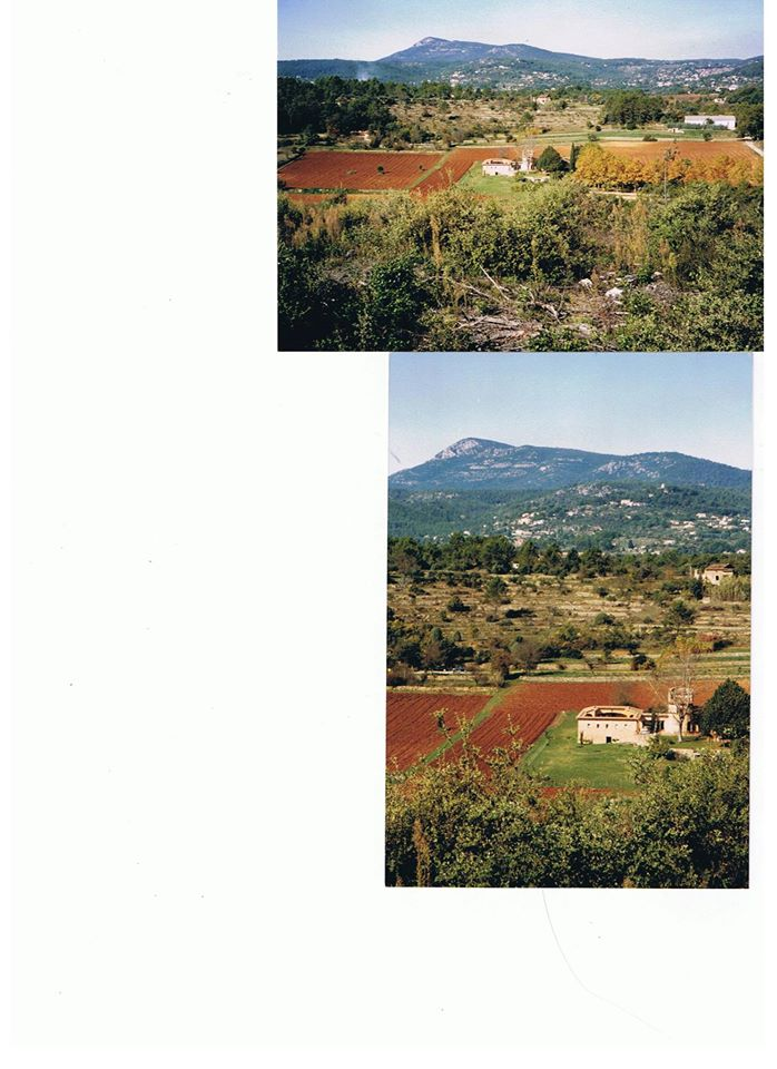 field 9.jpg