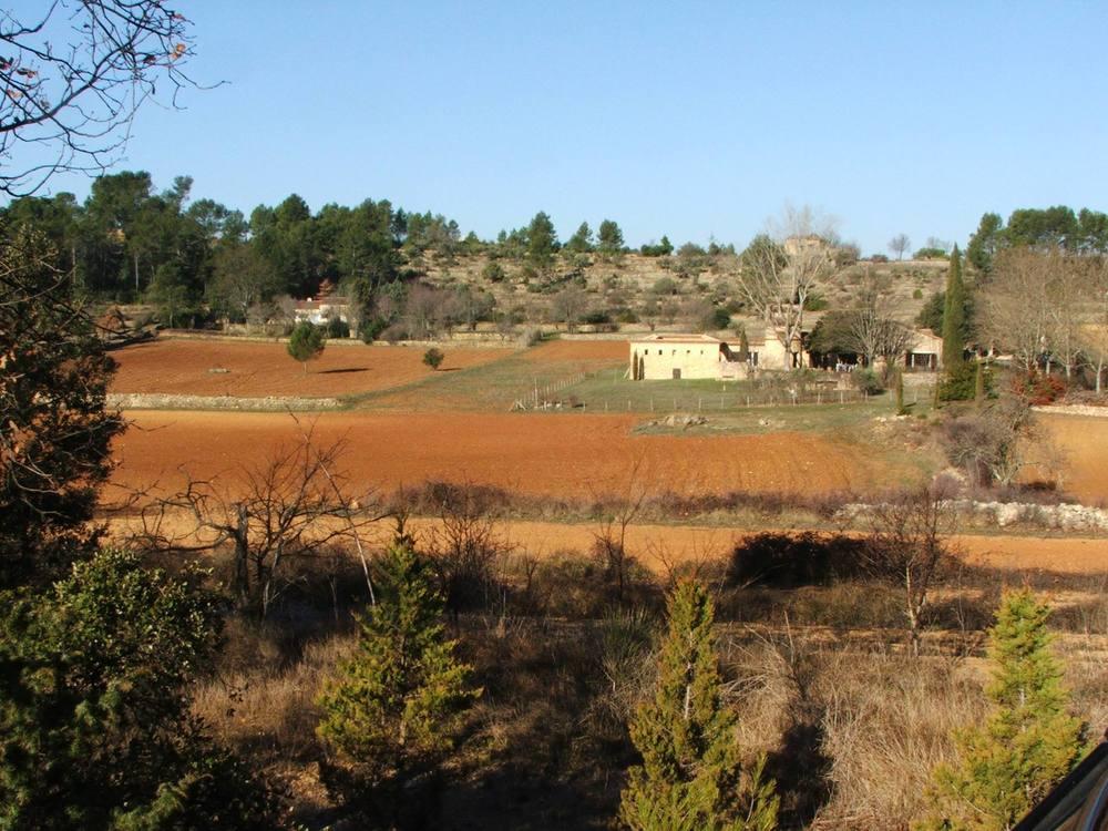 field 7.jpg