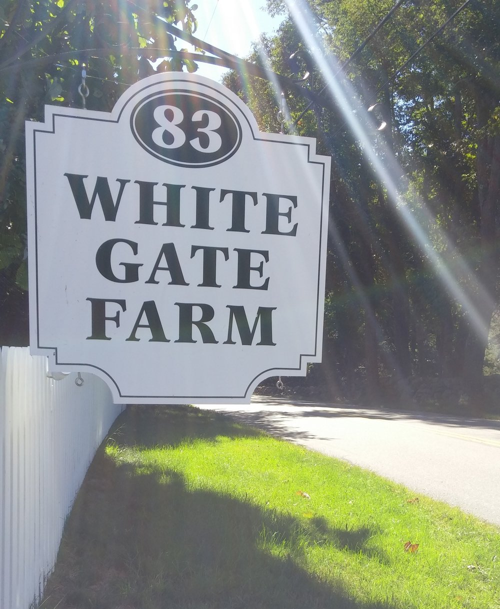 White Gate Sun Sign.jpg