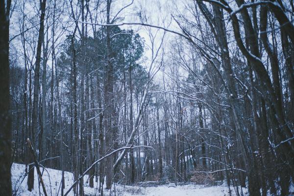 snowblog-10