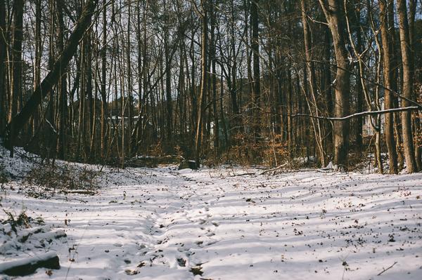 snowblog-13