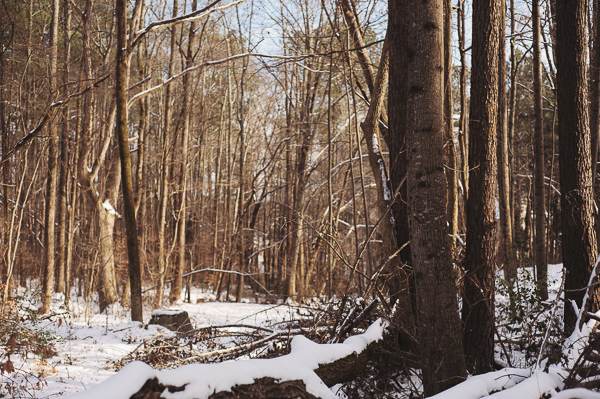 snowblog-14