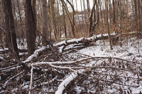 snowblog-19