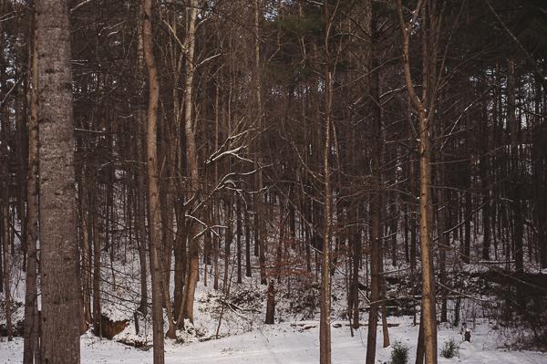 snowblog-21