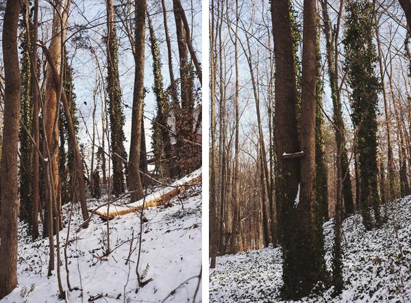 snowblog-23