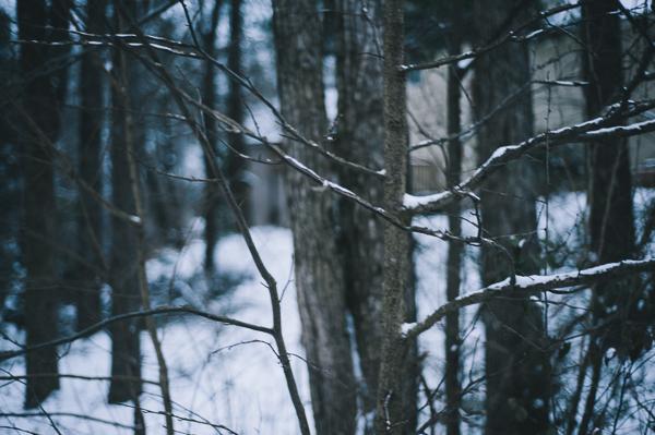 snowblog-5