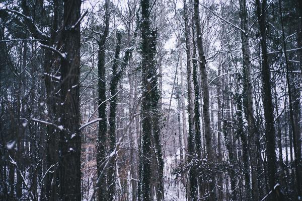 snowblog-6