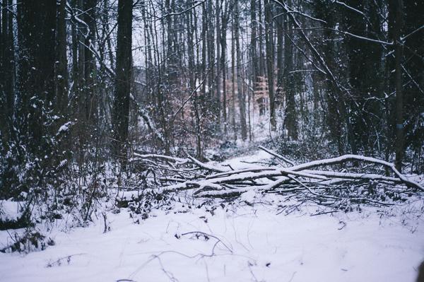 snowblog-8