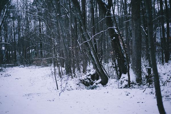snowblog-9