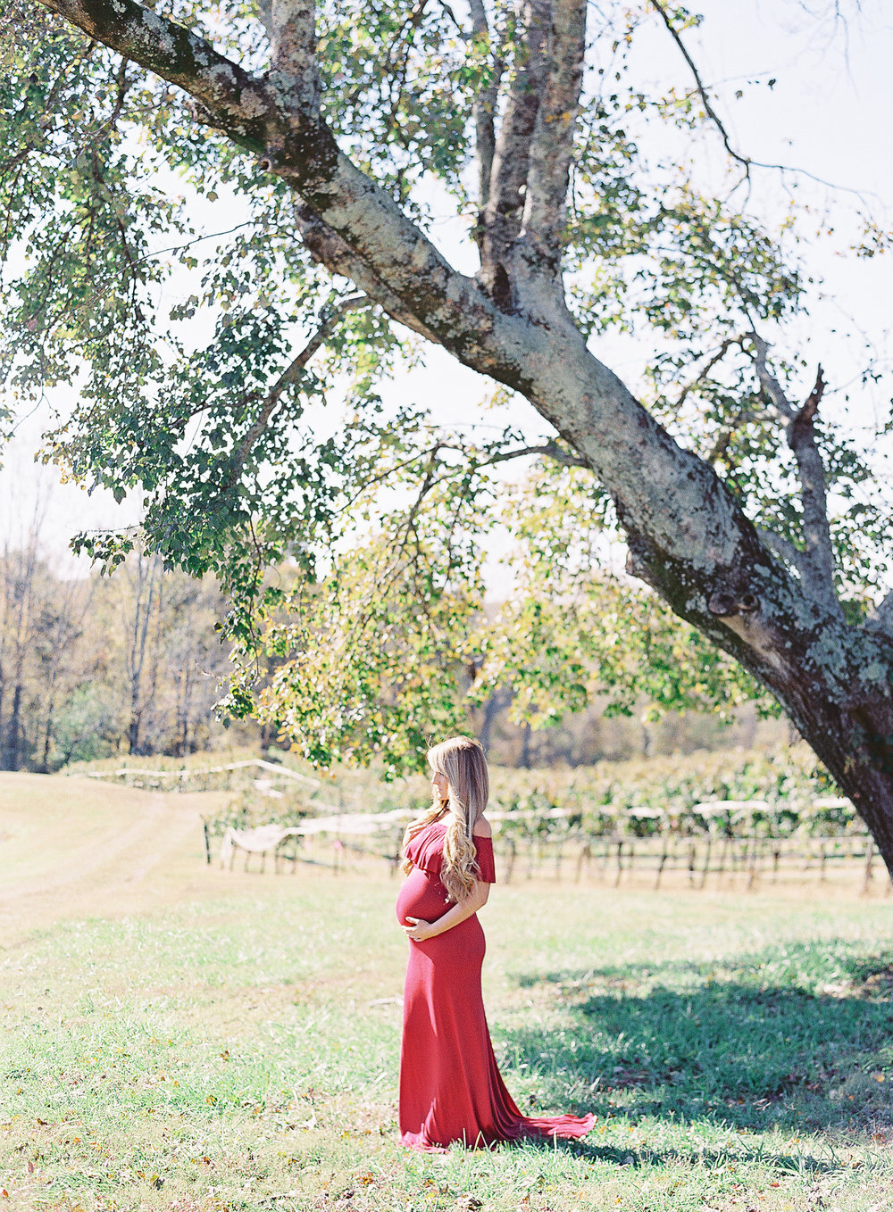 dahlonega-georgia-atlanta-montaluce-winery-wedding-family-photographer-hannah-forsberg-10.jpg