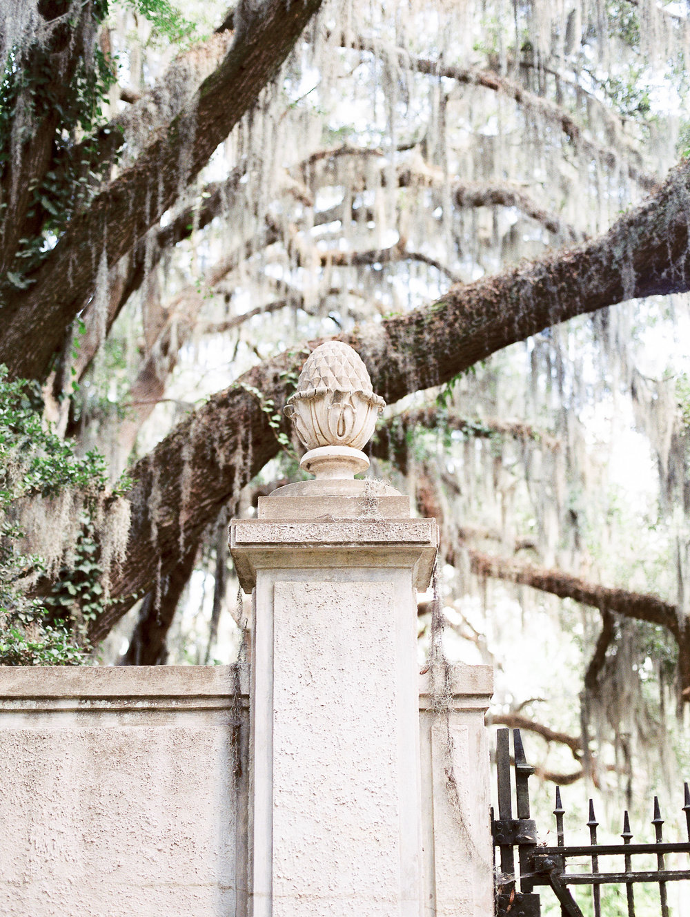 hannah-tommy-wormsloe-historic-site-engagement-photos-hannah-forsberg-atlanta-wedding-photographer-39.jpg