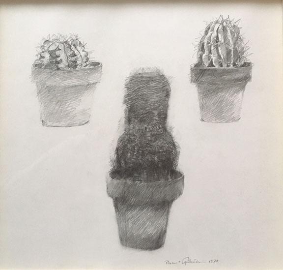 Rubenstein_Cactus_78.jpg