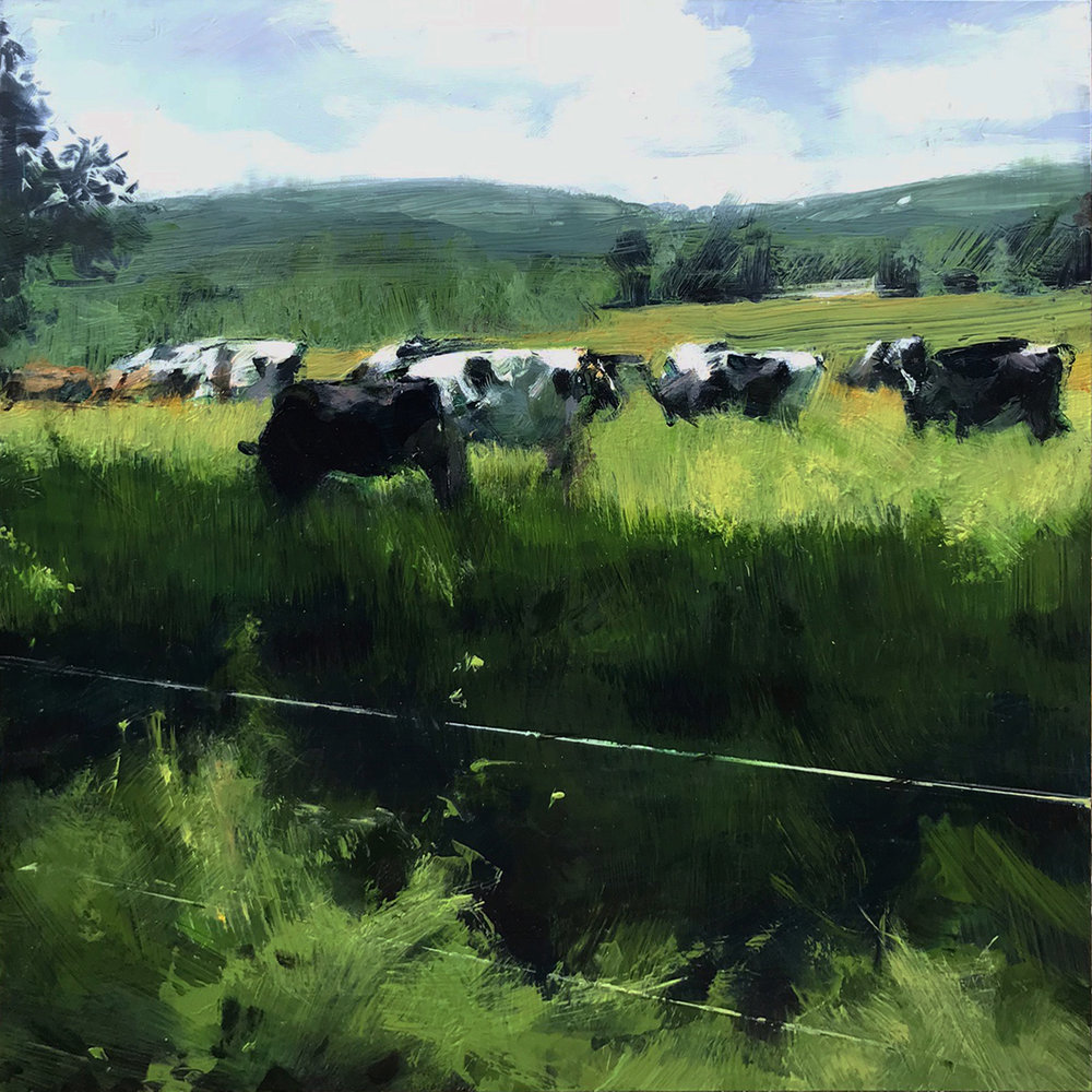 Berkshire Pasture , 2018 oil on panel, 12 x 12 inches