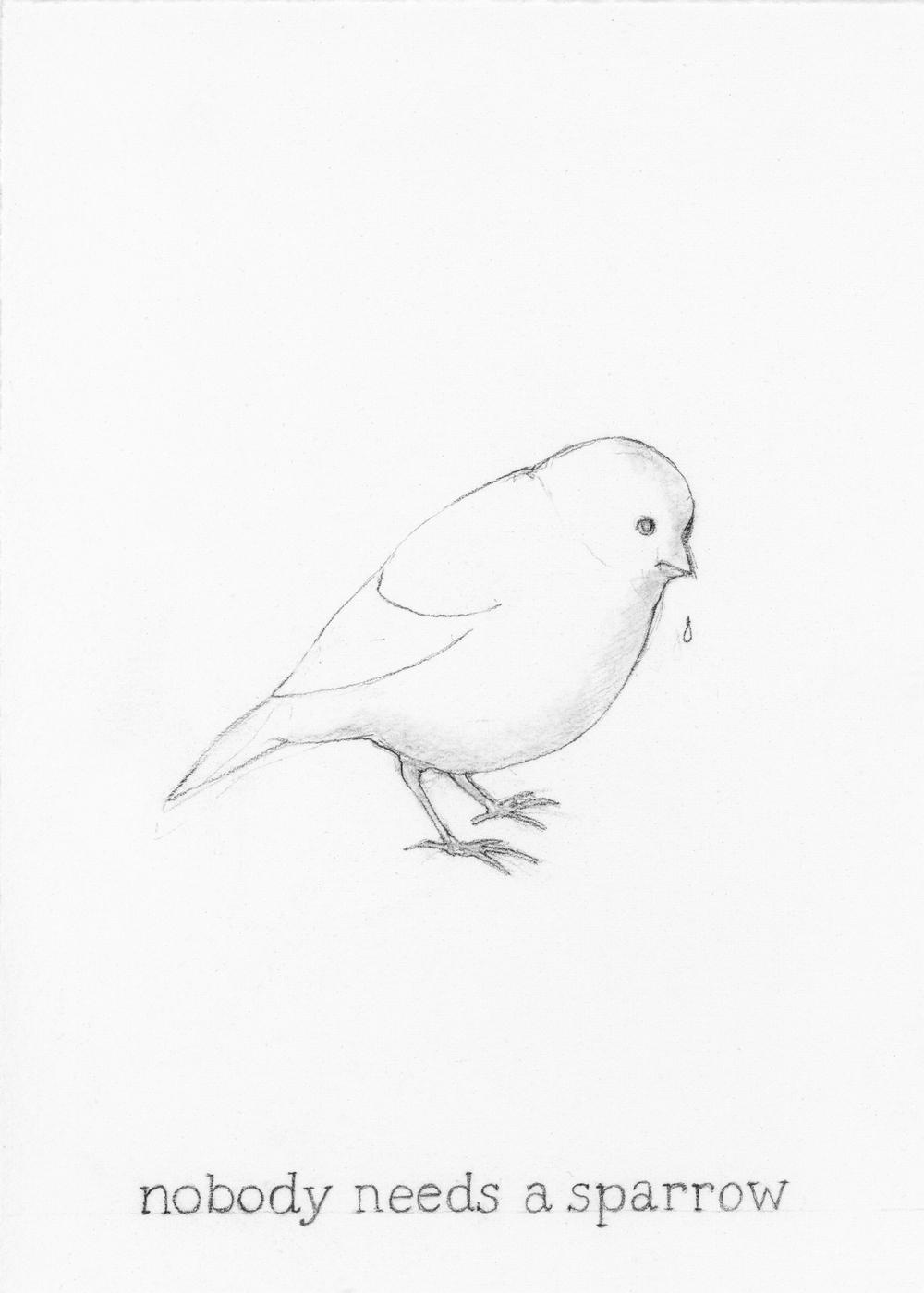 Nobody needs a sparrow