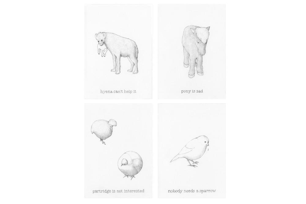 "Endangered Species,  2009  Graphite on paper, 7"" x 5"" each"